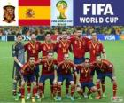 Selection of Spain, Group B, Brazil 2014