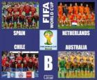 Group B, Brazil 2014