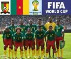 Selection of Cameroon, Group A, Brazil 2014