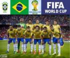 Selection of Brazil, Group A, Brazil 2014
