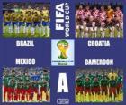 Group A, Brazil 2014