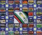 Groups Brazil 2014