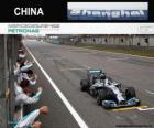 Lewis Hamilton 2014 Chinese Grand Prix champion