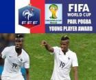 Paul Pogba, young player award. Brazil 2014 Football World Cup