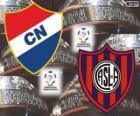 Club Nacional of Paraguay vs San Lorenzo de Almagro of Argentina. Final Copa Libertadores 2014