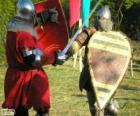 Two soldiers fighting with swords and shields