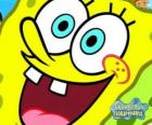SpongeBob is the hero of the adventures in Bikini Bottom