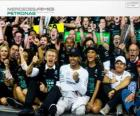 Lewis Hamilton, F1 world champion 2014 with Mercedes