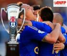 The U, Club Universidad de Chile, Chilean champion Apertura 2014