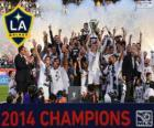 Los Angeles Galaxy, 2014 MLS champion