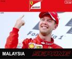 Sebastian Vettel celebrates his victory in the 2015 Malaysia Grand Prix
