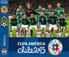 Mexico Copa America 2015