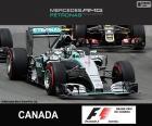 Rosberg G.P. Canada 2015