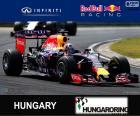 D. Ricciardo 2015 Hungarian Grand Prix