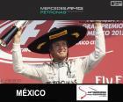 Rosberg 2015 Mexican Grand Prix