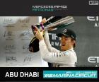 Rosberg 2015 Abu Dhabi Grand Prix