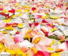 Rose petals wedding