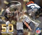 Broncos, Super Bowl 2016 Champions