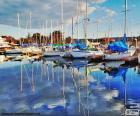 Several sailboats moored in the port and its reflection in the calm water