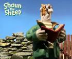 Shaun's farmer