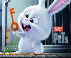 Snowball, a white rabbit