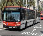 Barcelona's urban bus