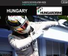 Lewis Hamilton celebrates his fifth win of the season at the Grand Prix of Hungary 2016