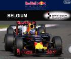 Daniel Ricciardo, GP Belgium 2016