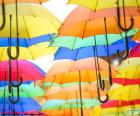 Umbrella of colors
