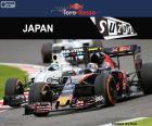 Carlos Sainz Jr., 2016 Japanese GP