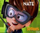 Nate, Storks
