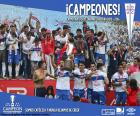 Universidad Católica, champion 2016