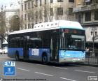 Urban buses of Madrid
