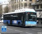 Urban buses of Madrid