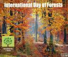 International Day of Forests, March 21. Importance of all types of forest ecosystems and trees, for the benefit of current and future generations