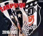 Beşiktaş, 2016-2017 champion