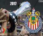 Club Deportivo Guadalajara, known as Chivas, is the champion of the tournament Clausura 2017, of League MX its twelfth title