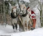 Papa Noel sled