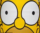 Eyes of Homer Simpson
