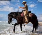 A cowboy on his horse by the sea