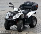 ATV or quad