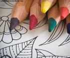 Book coloring for children or adults with several colored pencils