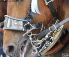 Bridle a Horse puzzle