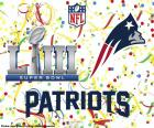 New England Patriots are the Super Bowl 2019 champions . They overcame in the final to Los Angeles Rams by 13-3