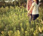 Couple in the field puzzle