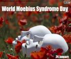 World Moebius Syndrome Day