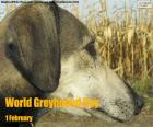 World Greyhound Day