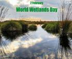 World Wetlands Day is celebrated on 2 February to highlight the importance of wetlands for Earth's biodiversity