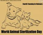 World Animal Sterilization Day
