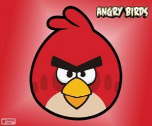 Red Bird puzzle
